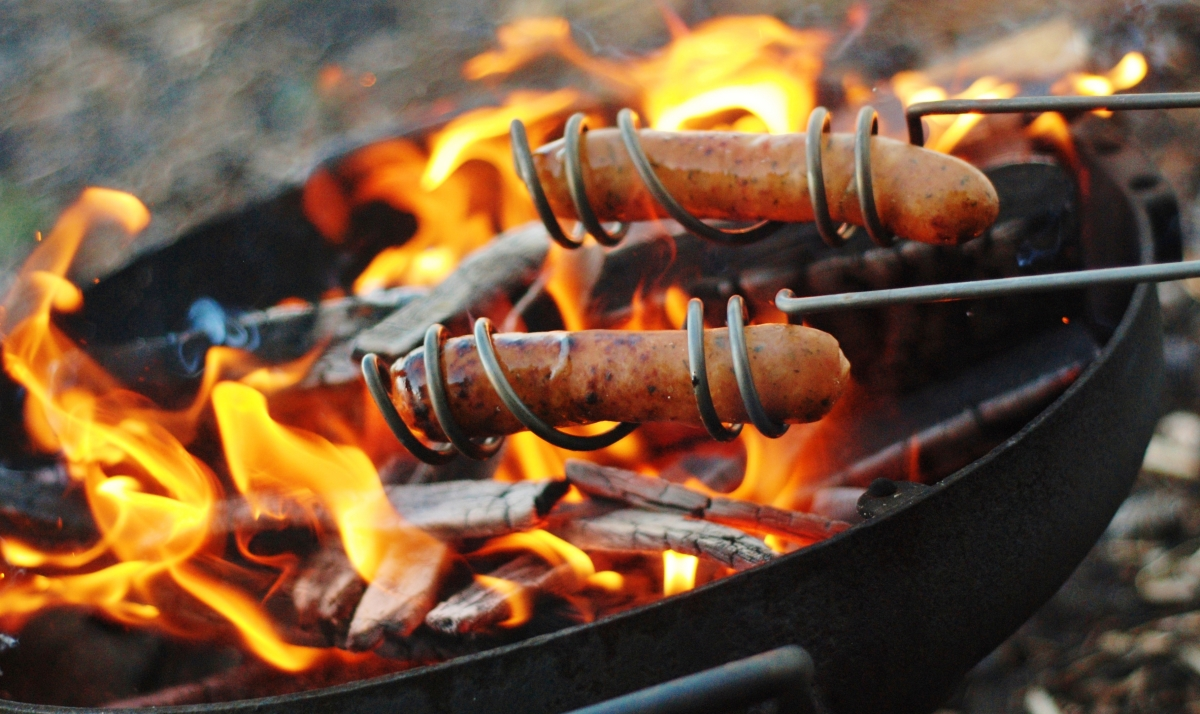 curly-dog-roasting-sticks