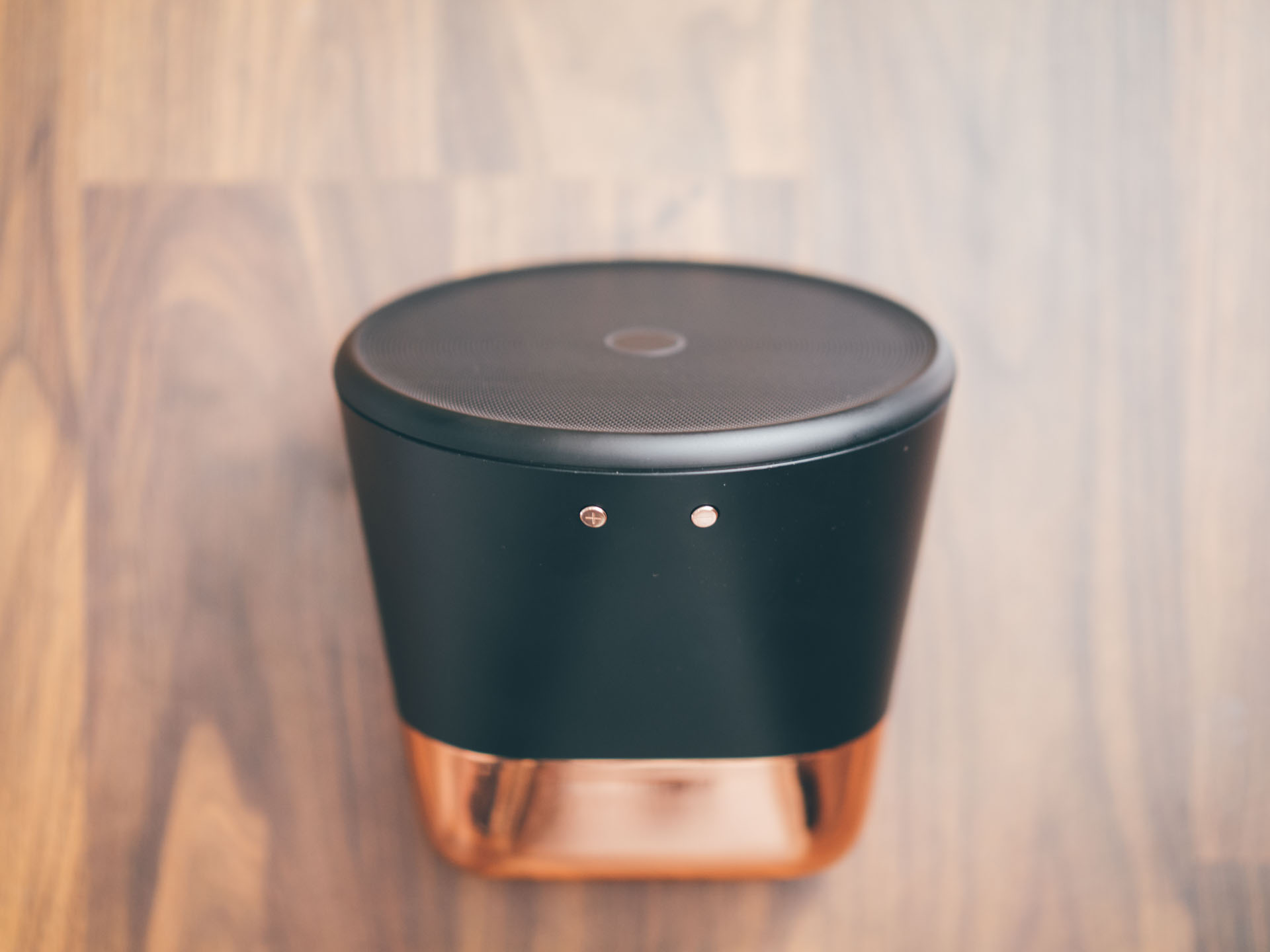 The Aether Cone is a wireless (but not Bluetooth) speaker. It'll play any music via AirPlay, or use the speaker itself to play songs from your Rdio collection.