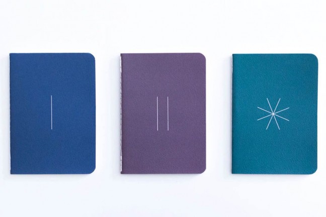 baron-figs-river-path-grass-apprentice-notebooks