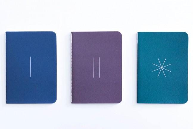 baron-figs-river-path-grass-apprentice-notebooks