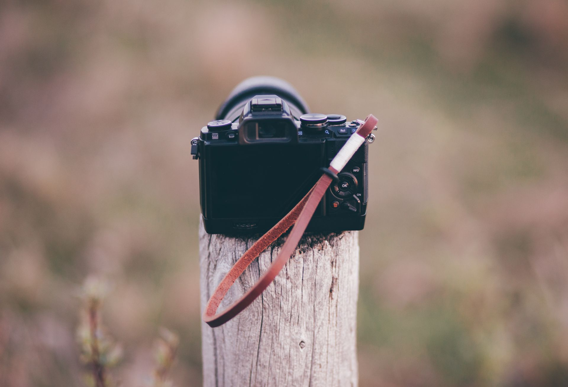 Gordy's Camera Wrist Strap