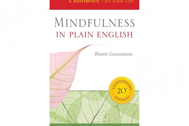 Mindfulness in Plain English by Henepola Gunaratana.