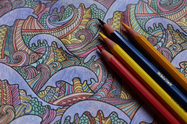 our-favorite-coloring-books-for-grown-ups-hero-maxime-de-ruyck