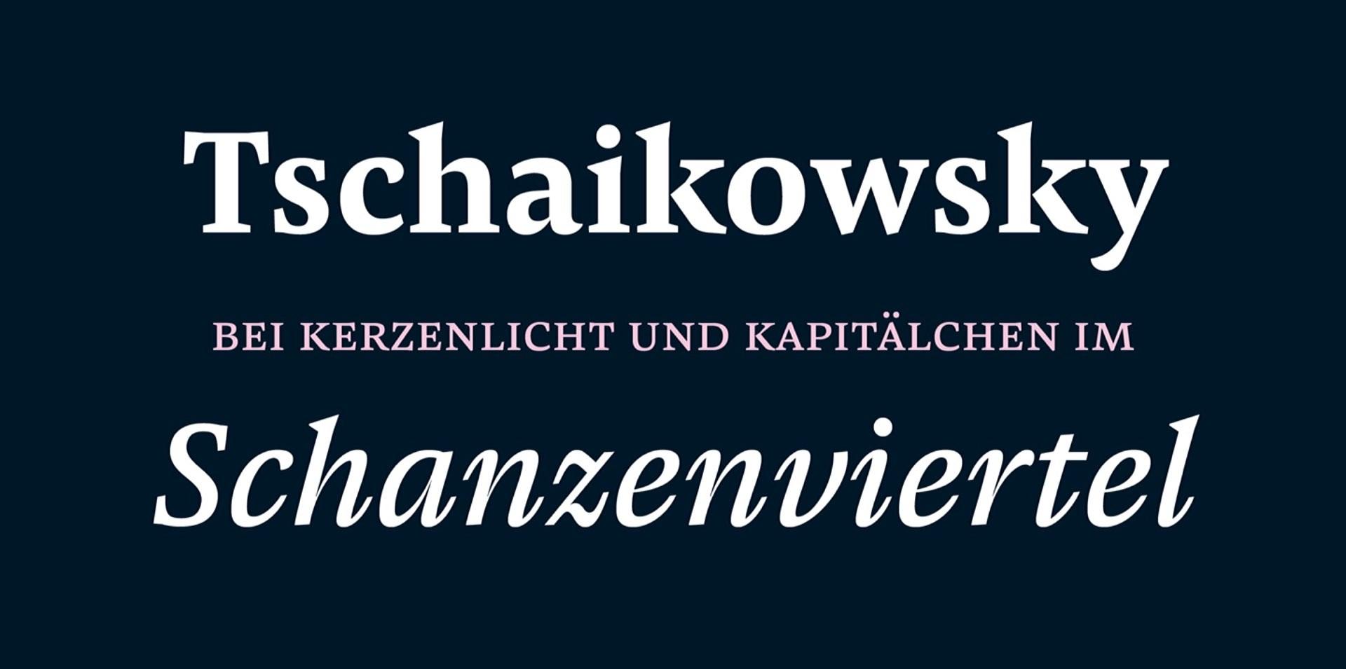 pensum-pro-typeface-by-nils-thomsen-2