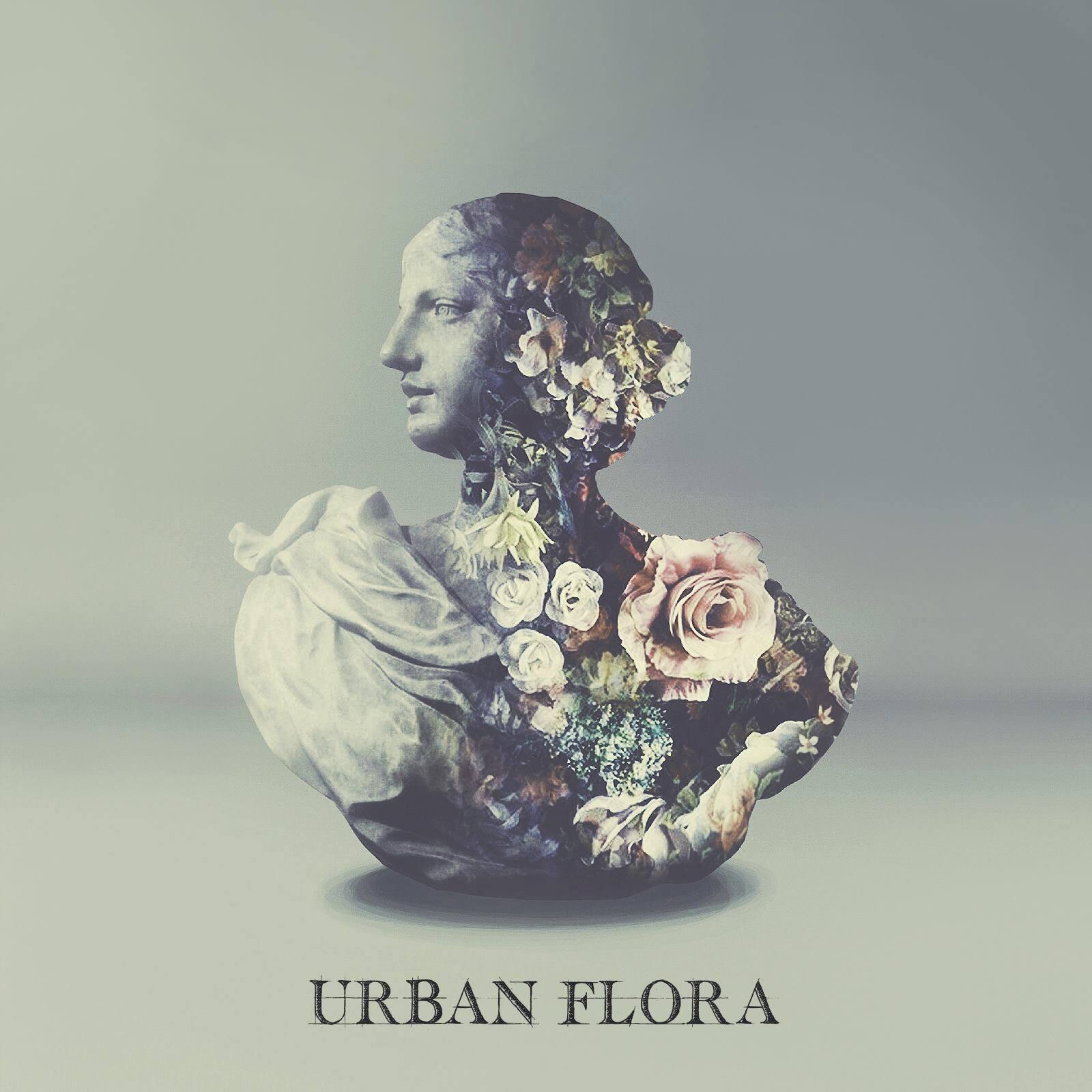 quality-linkage-urban-flora-alina-baraz-galimatias