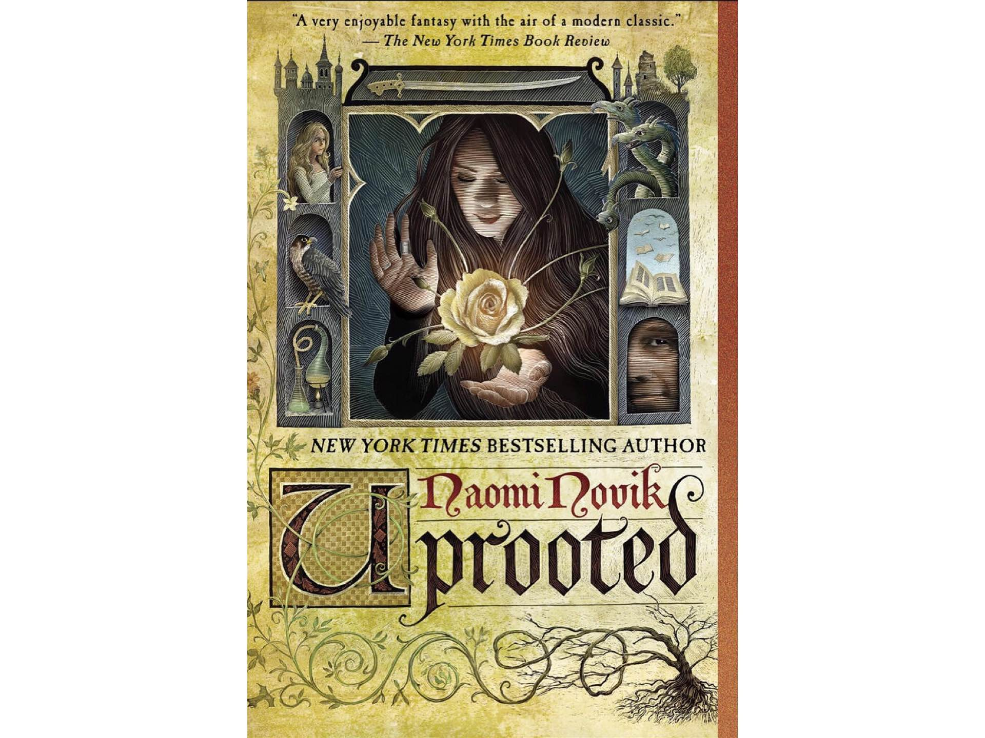 Uprooted by Naomi Novik. ($10 paperback)