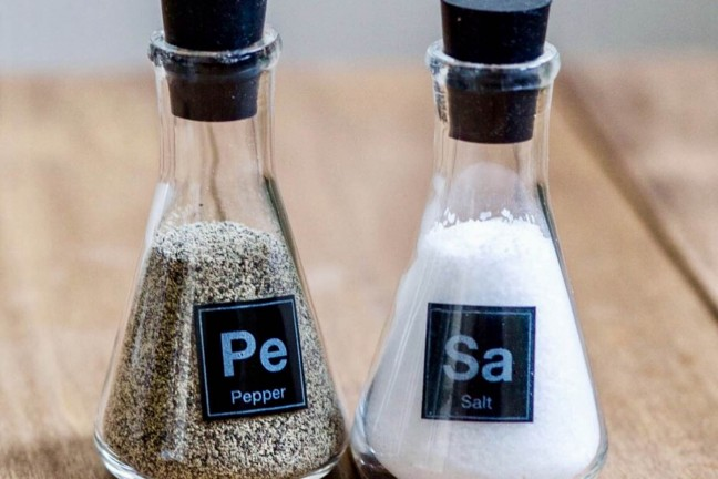 science-flask-salt-pepper-shakers