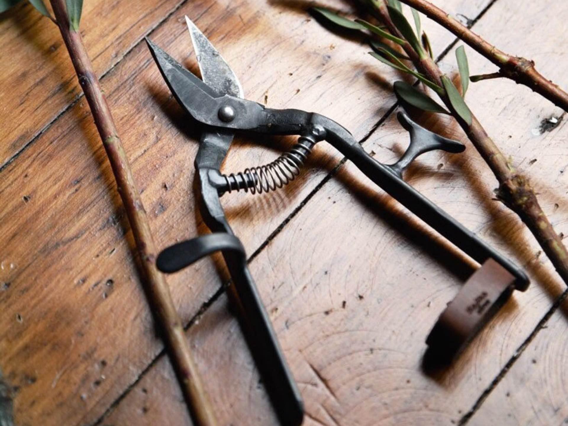 Tajika Haruo Ironworks garden clippers. ($210)