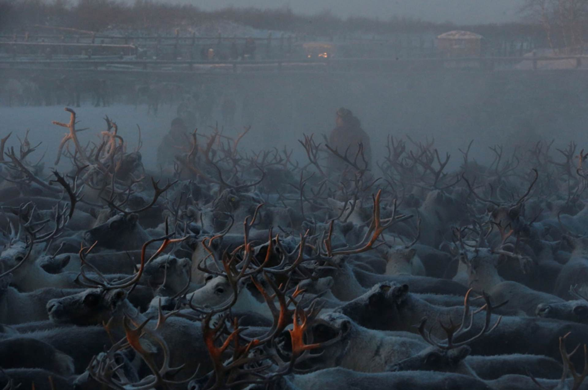 Photo: Sergei Karpukhin