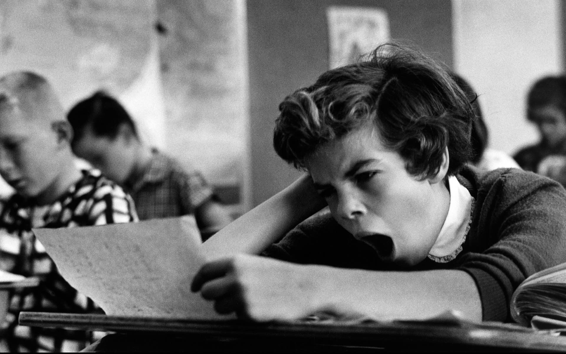 Photo: Wayne Miller / Magnum Photos (1955)