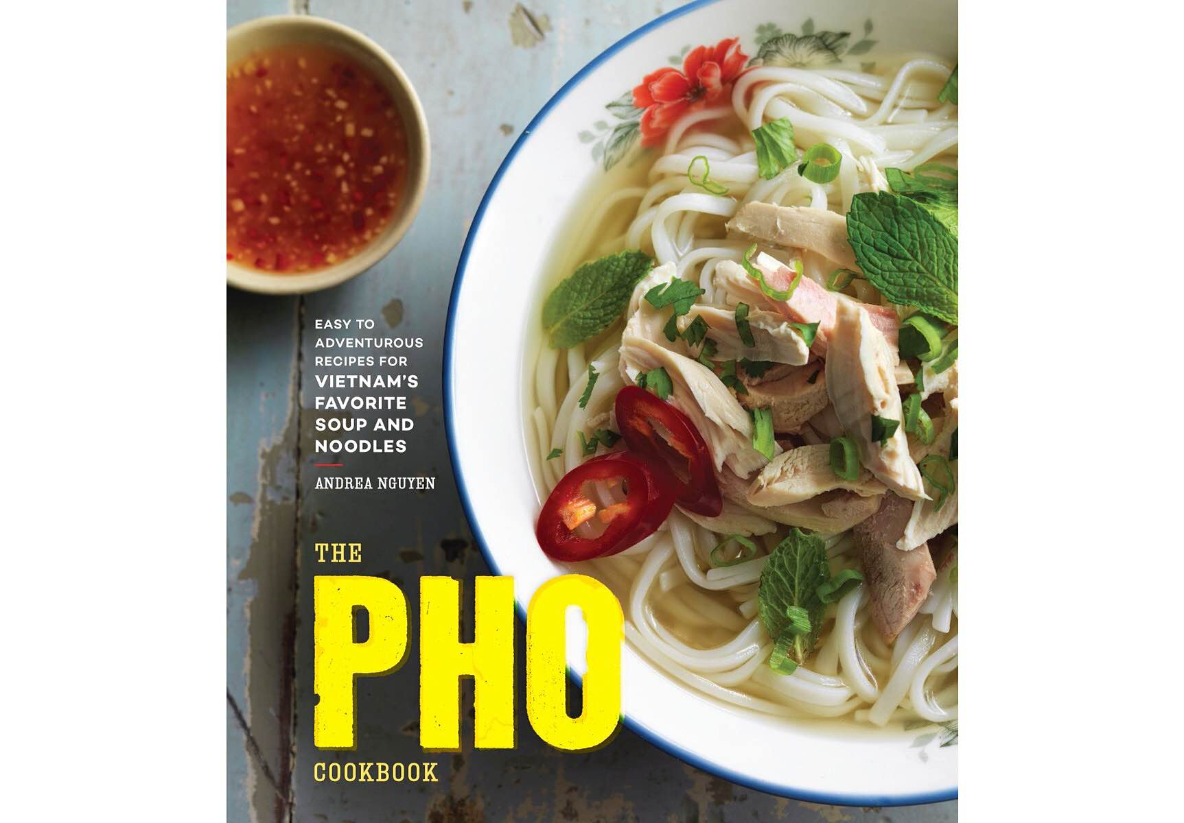 The Pho Cookbook by Andrea Nguyen.