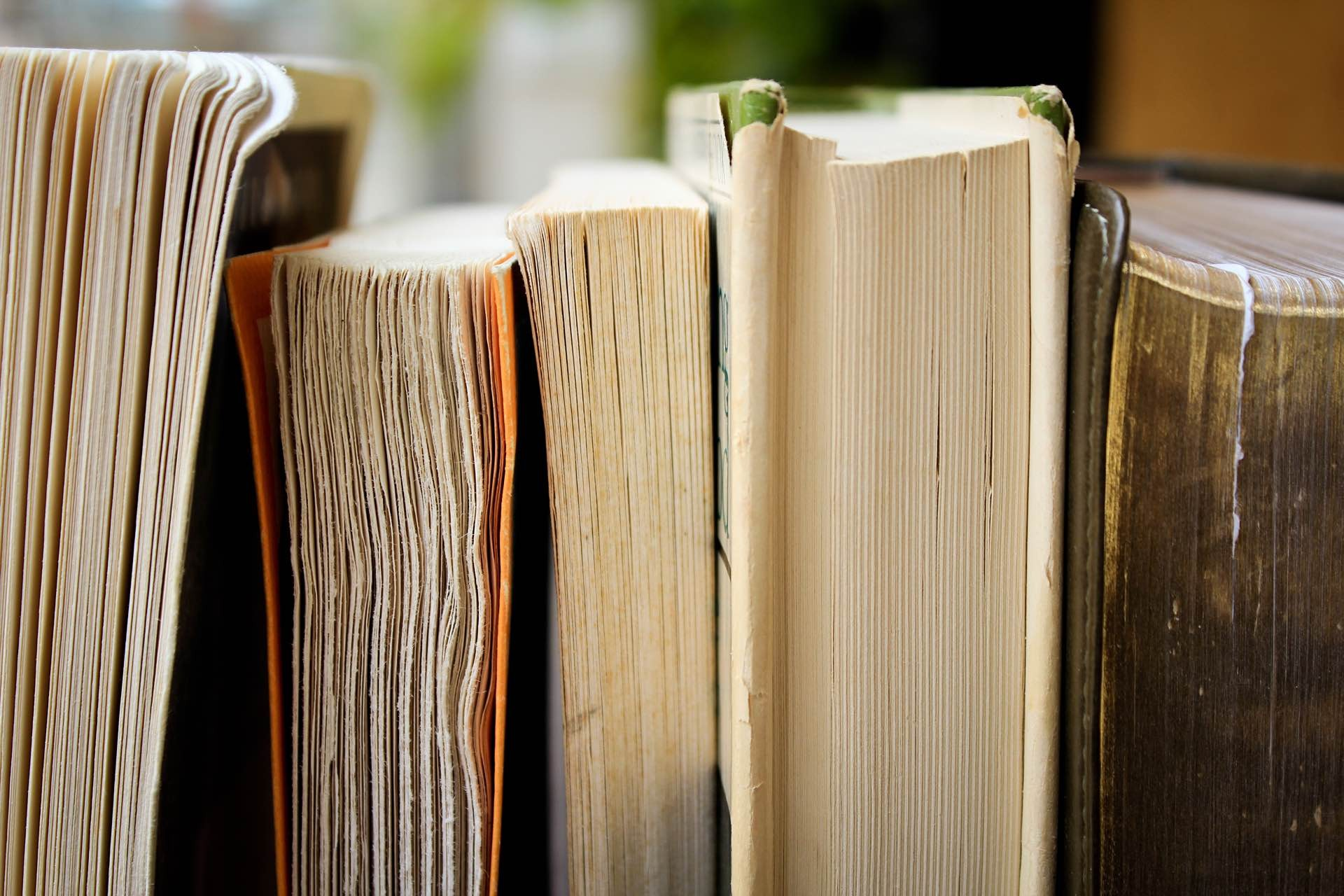 five-books-for-the-curious-guide-hero-syd-wachs