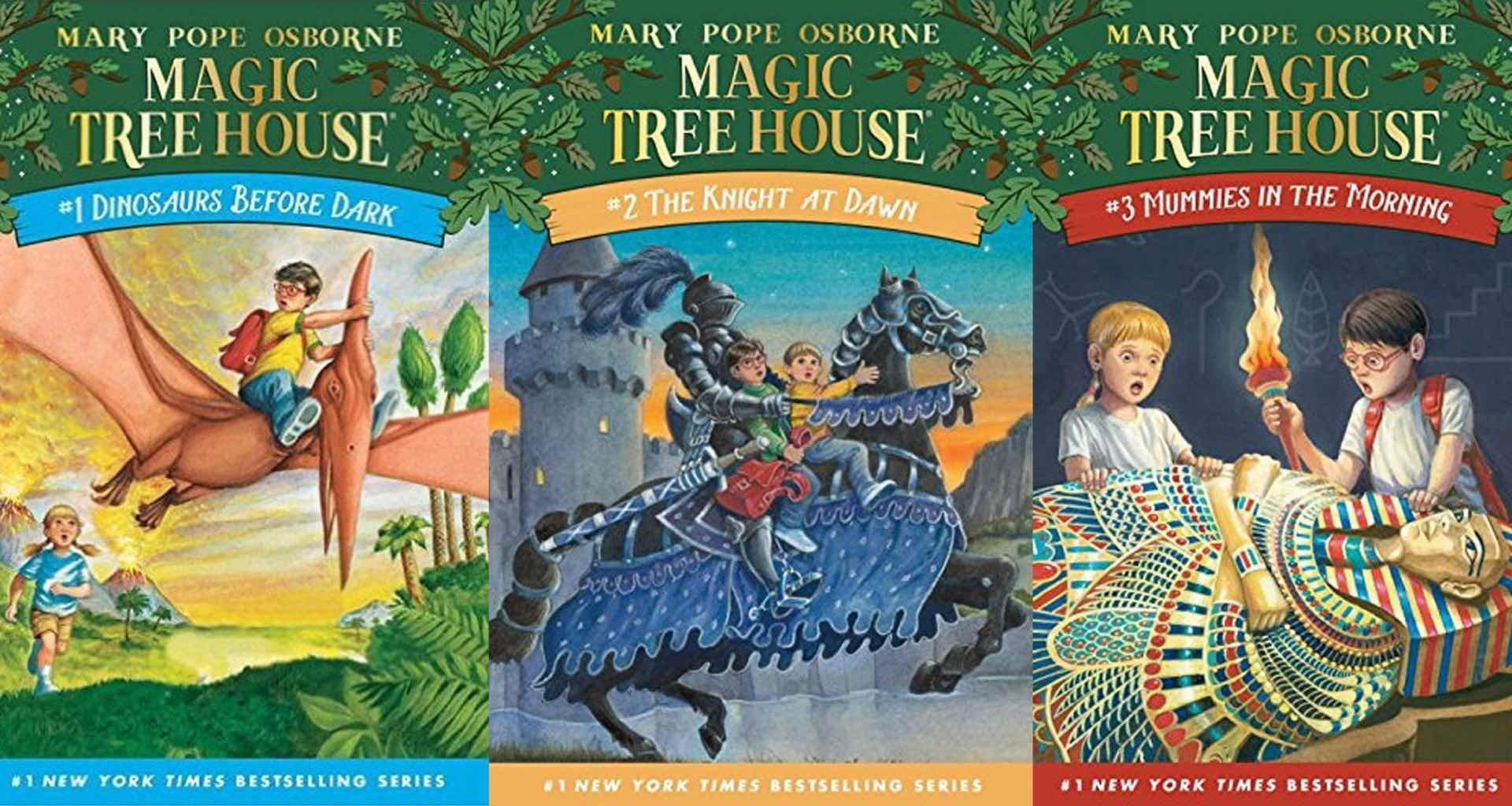 Magic Tree House series by Mary Pope Osborne.