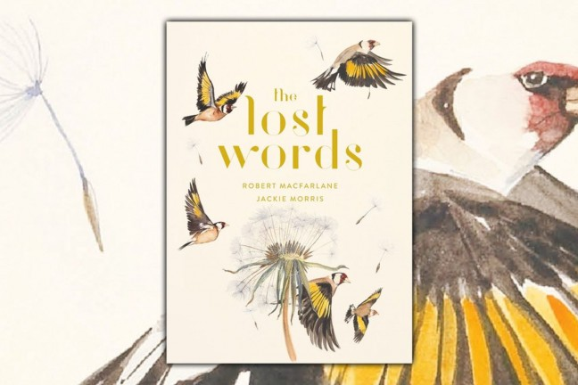 The Lost Words by Robert Macfarlane and Jackie Morris. ($26 hardcover)
