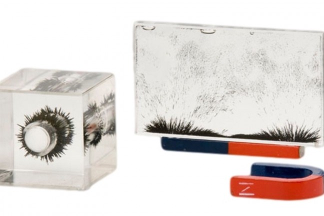 Sci-Supply magnetic field demonstrator set. ($60)