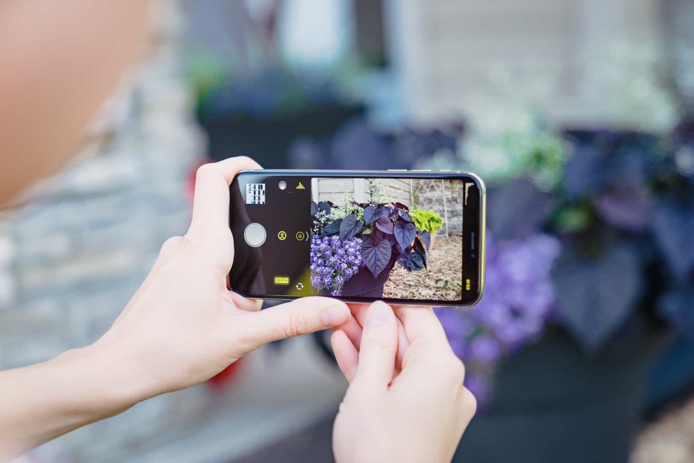 halide-is-the-best-third-party-camera-app-for-iphone-the-sweet-setup