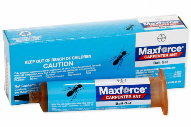 maxforce-carpenter-ant-bait-gel