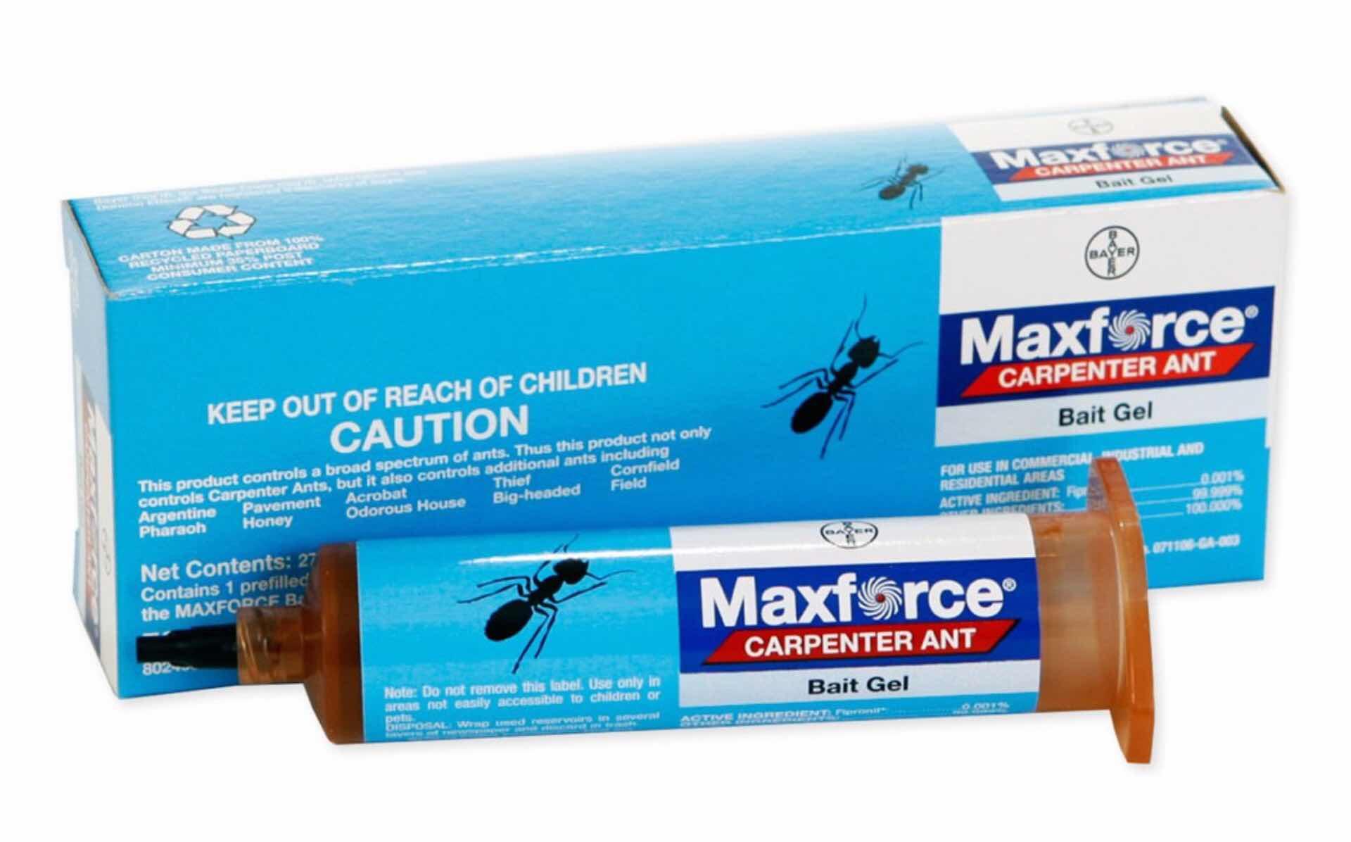 maxforce-carpenter-ant-bait-gel