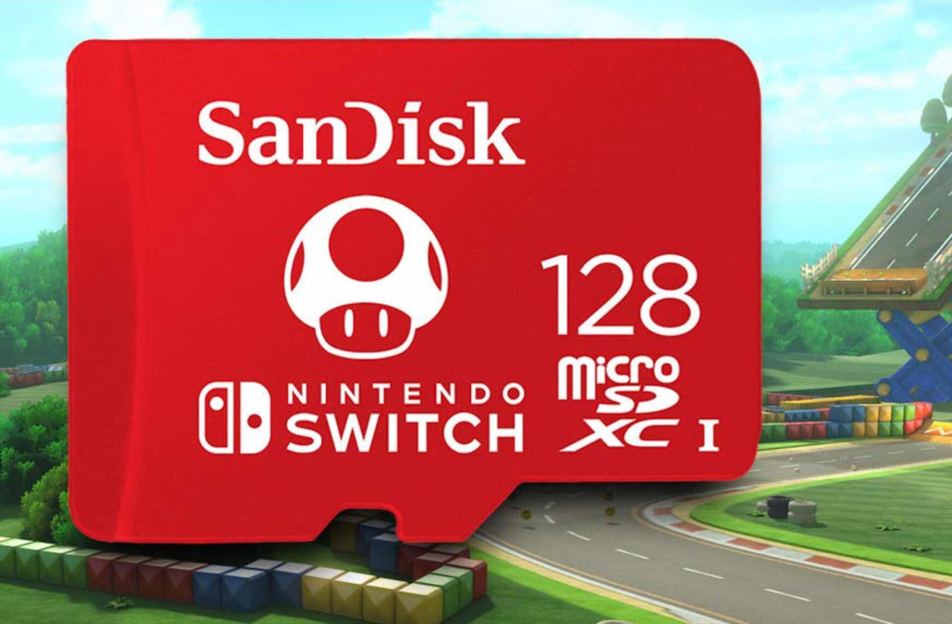 nintendo-switch-lite-launch-guide-micro-sdxc-card-storage