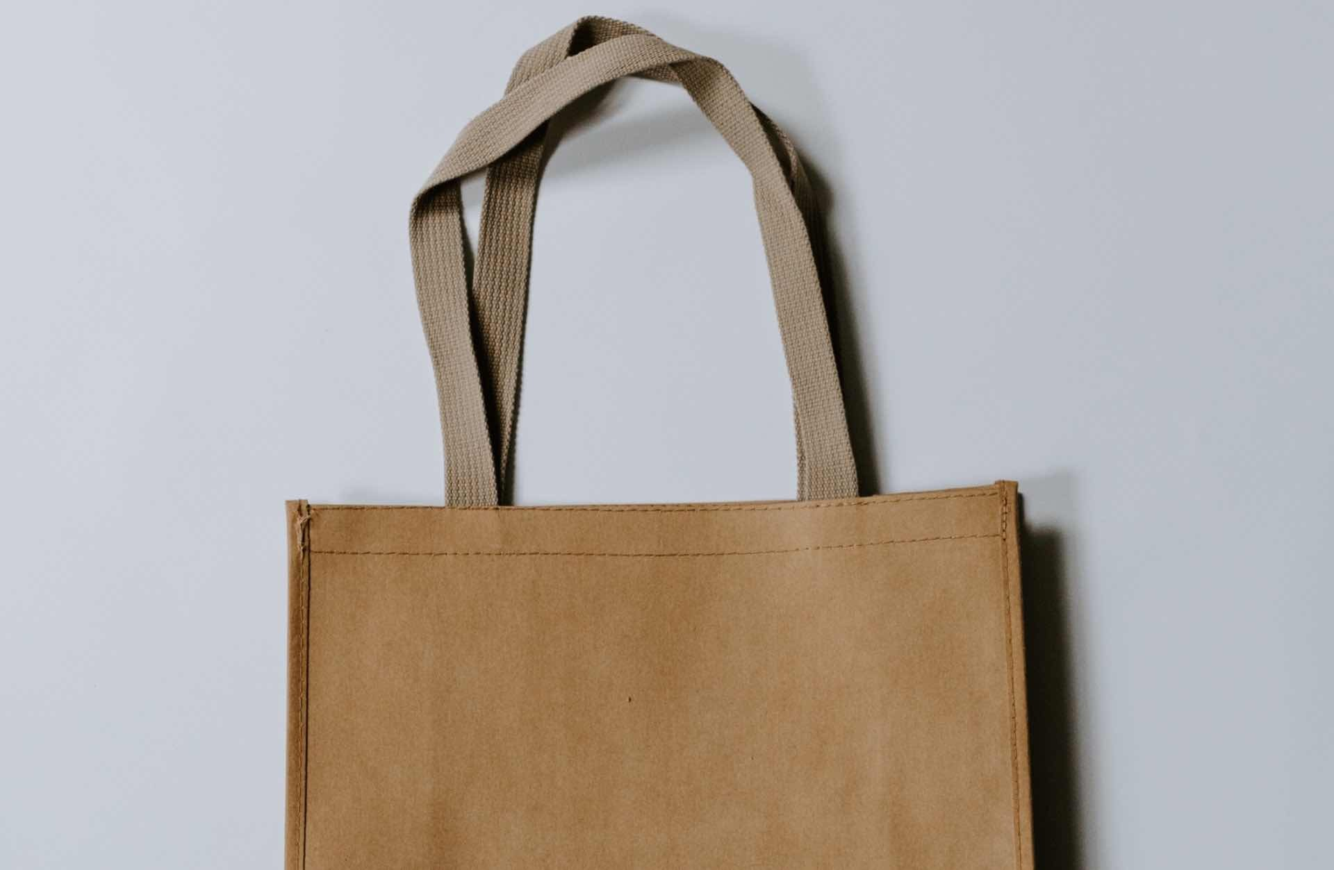 reusable-bags-to-replace-disposable-ones-guide-hero-kelly-sikkema
