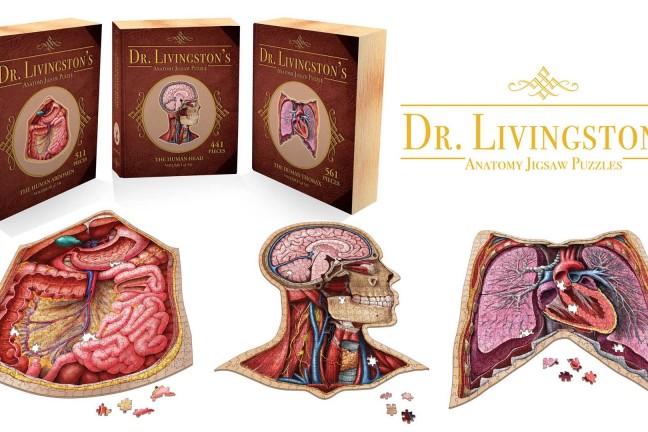dr-livingstons-human-anatomy-jigsaw-puzzles