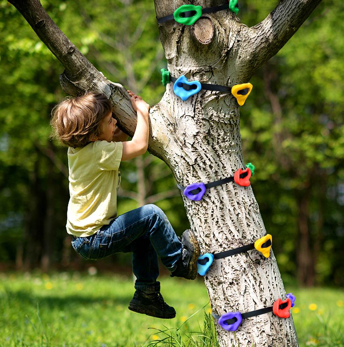 TOPNEW Tree-Climbing Holds for Kids